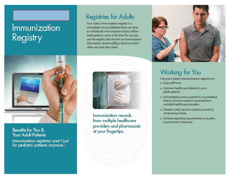 IIS Customizable Brochure Targeted to Adult Providers