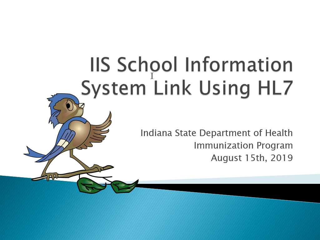 School Information Systems' Integration into IIS Using HL7